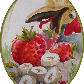 Chicken eating fruit by NANCYMAUERMAN
