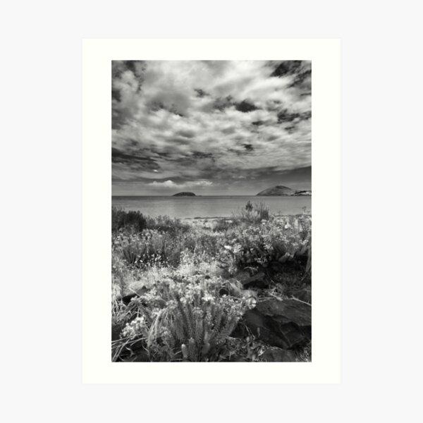 Encounter Bay, South Australia  Art Print