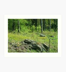 Rock Outcrop Art Print