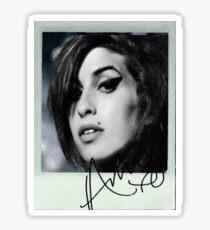 amy polaroid  Sticker