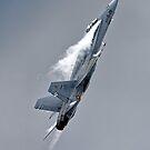 McDonnell Douglas EF-18M Hornet by Andrew Harker
