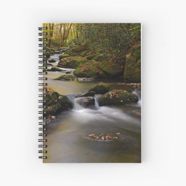 Stairsteps II Spiral Notebook