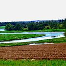 Colours of PEI. Canada by Shulie1