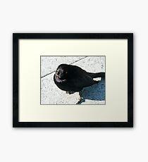 Funeral Genius Blackbird Framed Print
