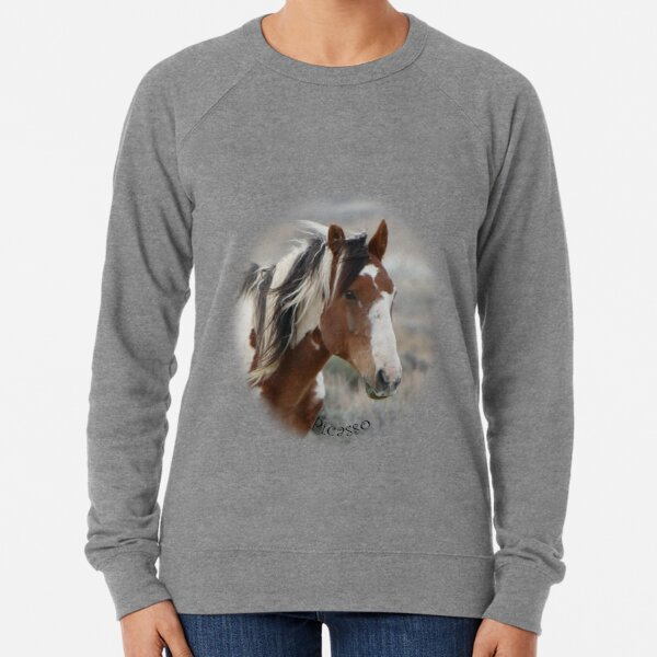 Picasso of Sand Wash Basin Lightweight Sweatshirt