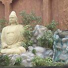 Meditation by scorpionscounty