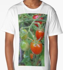 Stages. Tomatoes. Long T-Shirt