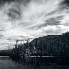 Little Salmon Lake by Yukondick