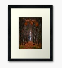 How to open door to paradise . Psalm 127:2 . #autumn . Andrzej Goszcz. Views 1307. Framed Print