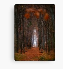 How to open door to paradise . Psalm 127:2 . #autumn . Andrzej Goszcz. Views 1307. Canvas Print