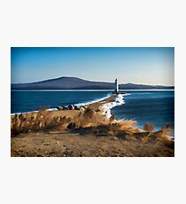 Winter Tokarevsky lighthouse  Photographic Print