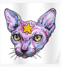 Star Cat Poster