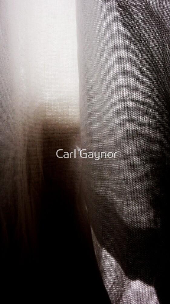 Ethereal -Triptych  by Carl Gaynor