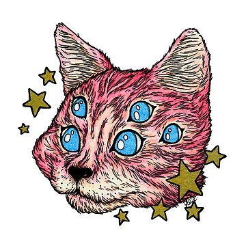 Pink Star Cat by LillianCuda