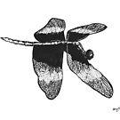 Flying Dragonfly by Veronica Krawcewicz