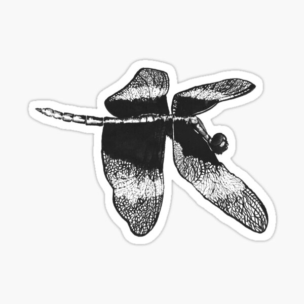 Flying Dragonfly Sticker