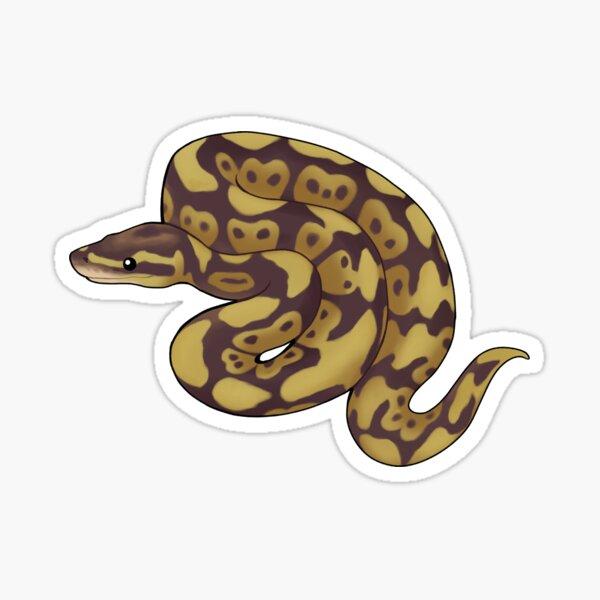 Ball Python  Sticker