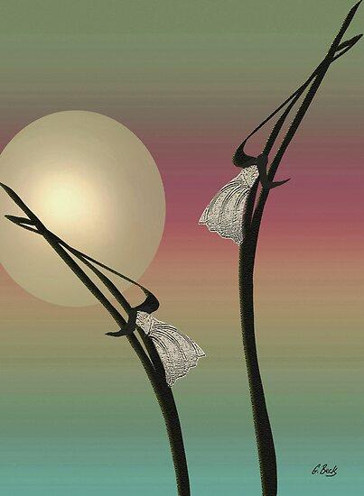 Tropic Mood by Gordon Beck