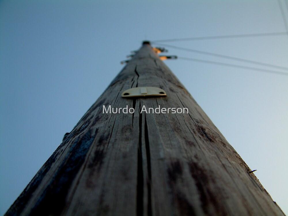 Weather Worn 2 by Murdo  Anderson