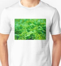 Green leaves and dew T-Shirt