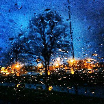 Dusk on a Rainy Day by nativeminnow
