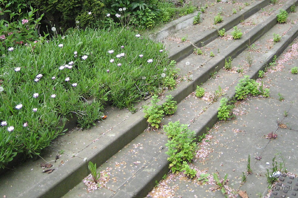 Green Grow the Stairs by Yonmei