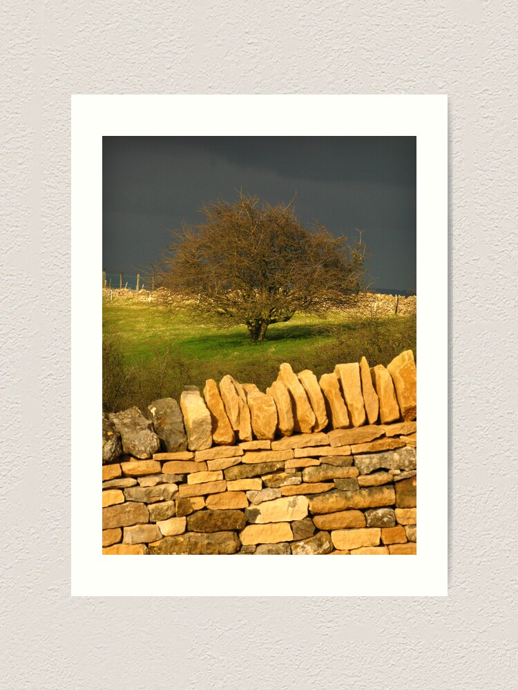 Alternate view of Cotswold Tree Art Print