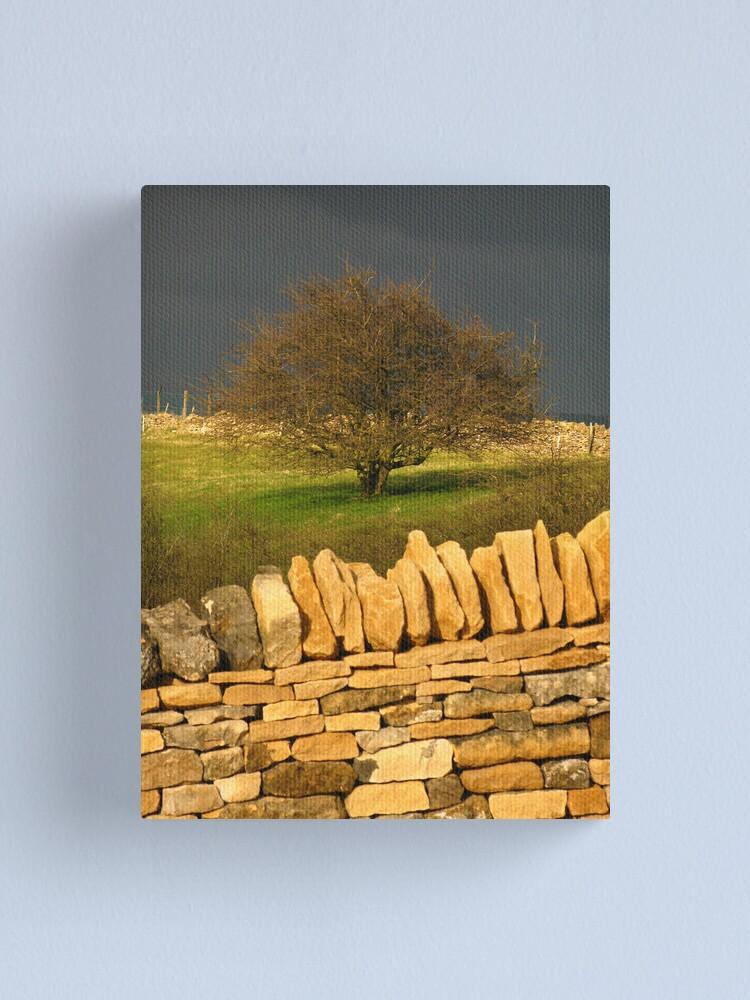 Alternate view of Cotswold Tree Canvas Print