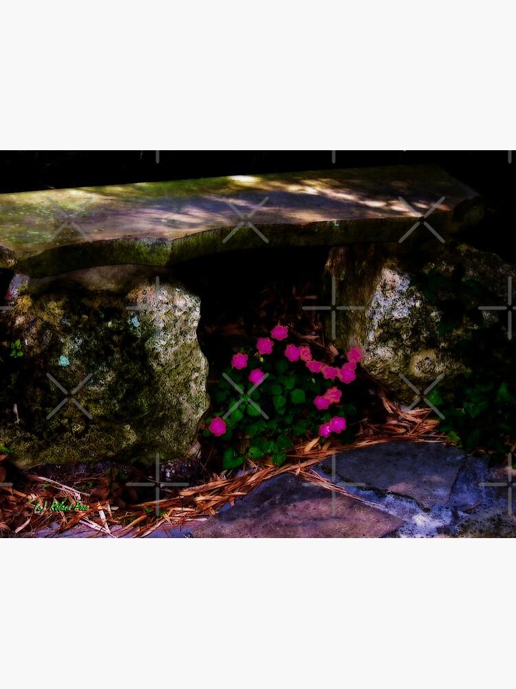 Stone Bench by photorolandi