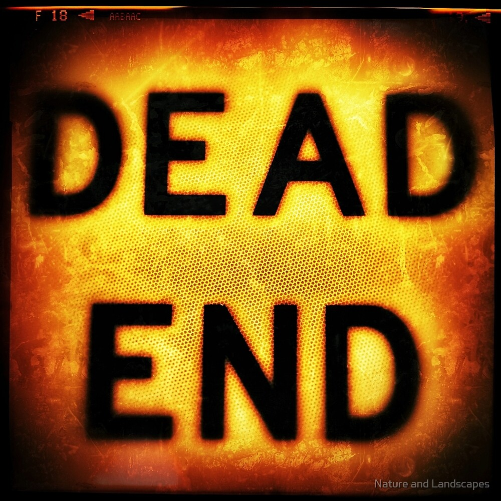 Dead End by Nathan Little