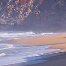 Fishing the Surf by renofog