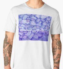 Stony Blue Fun Craze Men's Premium T-Shirt