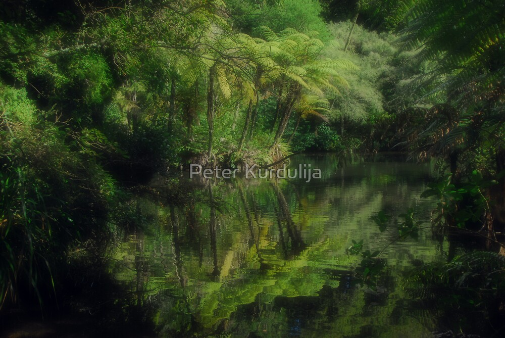 The Message of Perfection Is Written In Green by Peter Kurdulija