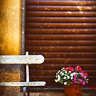Bench and vase of flowers by Silvia Ganora