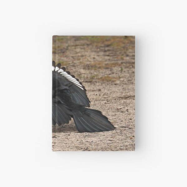 White-winged Chough - Little Desert NP (1026) Hardcover Journal