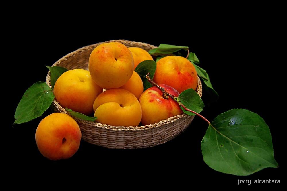 Apricots by jerry  alcantara