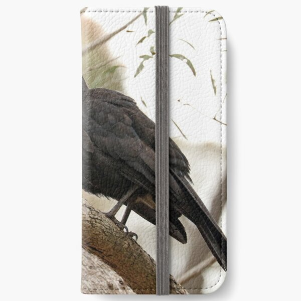 White-winged Chough - Little Desert NP (61) iPhone Wallet