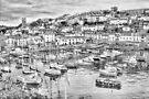 Brixham Harbour by missmoneypenny