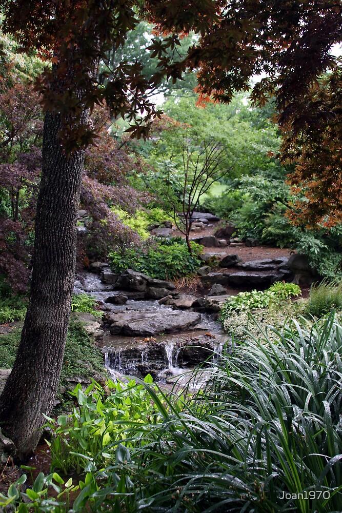 Garden falls by Joan1970