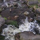 Running water by LeslieSweets