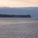 Iceberg by LeslieSweets