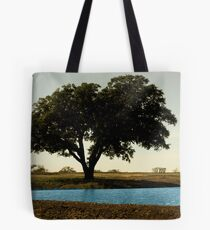 Tree by Pond Tote Bag