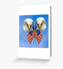 Bald Eagles and the Flag Greeting Card