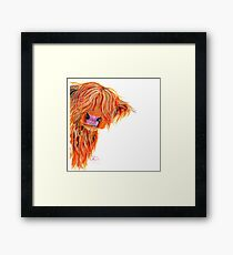 HIGHLAND COW 'PEEKABOO' BY SHIRLEY MACARTHUR Framed Print