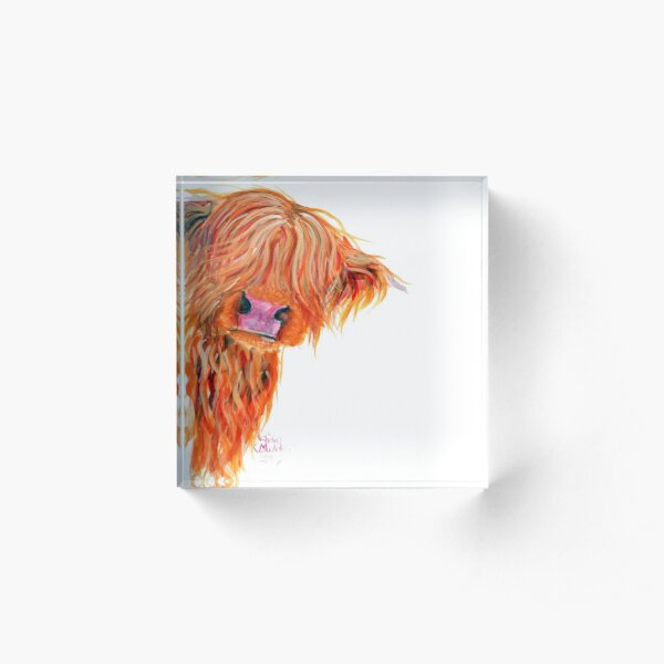 HIGHLAND COW 'PEEKABOO' BY SHIRLEY MACARTHUR Acrylic Block