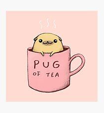 Lámina fotográfica Pug de té