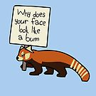"""Red Panda """"Why Does Your Face Look Like A Bum"""" by jezkemp"""