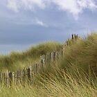 Gronant Dunes, Prestatyn by lezvee