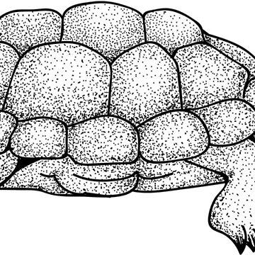 dot work tortoise by LMatthewsDesign