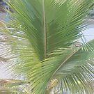 Go Green...... by scorpionscounty